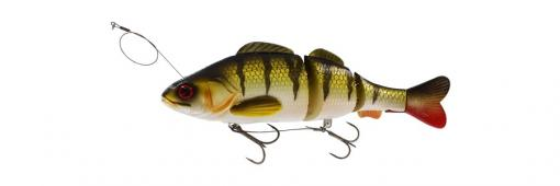 Percy the Perch HL Inline