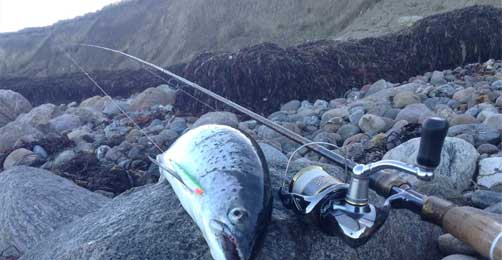 Køb fiskegrej århus